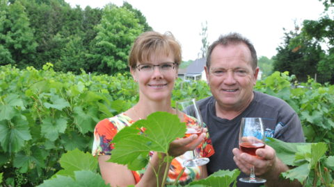 Nancy Gauthier et Robert Brien aux vignes