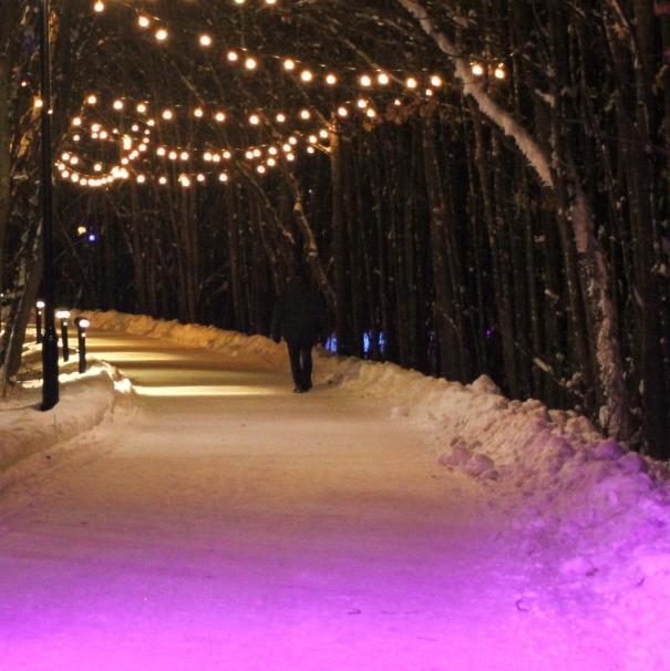 Parcours illuminé du sentier de la rivière, La Grande Dégelée
