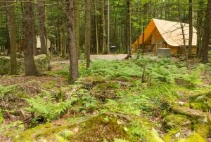 2021-04-27 15_09_11-Parc national de la Yamaska - Parcs nationaux - Sépaq