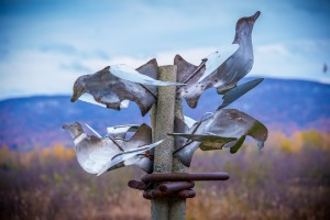 culturelle - l'arbre de paix